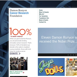 Damon Runyon Cancer Institute
